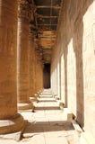 在埃德富里面寺庙  埃及 免版税库存图片
