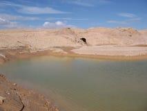 在埃拉特,以色列附近的一个池塘 库存图片