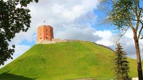在城堡小山,维尔纽斯的塔 图库摄影