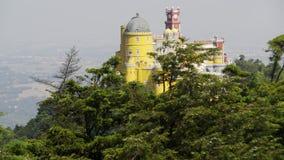 在城堡附近的树在小山 股票录像