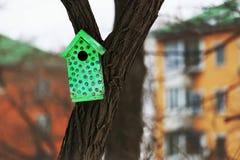 在城市上色在一棵树的鸟舍 免版税库存图片