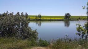 在城市之外的美丽的湖 库存图片