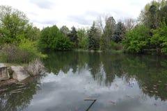 在城市公园筑成池塘在博伊西,爱达荷 免版税图库摄影