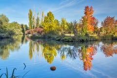 在城市公园筑成池塘在秋天时期 免版税库存照片