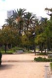 在城市公园路的长凳 图库摄影
