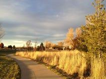 在城市公园,极光,科罗拉多,美国2015年11月骑自行车足迹 免版税库存照片