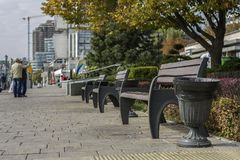 在城市公园 免版税库存照片