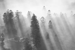 在城市地平线的神奇雾 库存照片