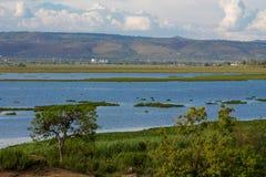 在城市基苏木附近的维多利亚湖风景在肯尼亚 免版税库存图片