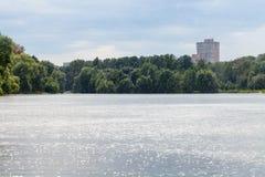 在城市池塘的夏天大雨 库存图片