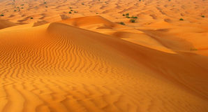 在城市沙漠迪拜附近 图库摄影
