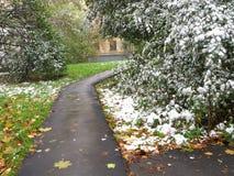 在城市的第一雪 免版税库存照片
