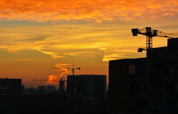 在城市的红色skyes 免版税库存图片