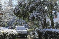 在城市街道、房子和汽车的大雪 库存照片