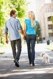 在城市街道的夫妇走的狗 免版税库存图片