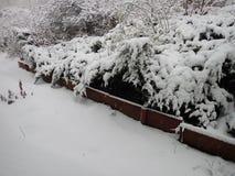 在城市街道的雪灾难 图库摄影