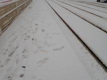 在城市街道的雪灾难 免版税库存图片