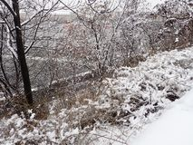 在城市街道的雪灾难 免版税库存照片