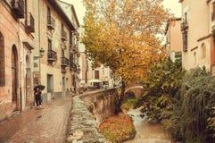 在城市附近历史区域的黄色红色秋天树在有河桥梁的安大路西亚在多雨天气 库存图片