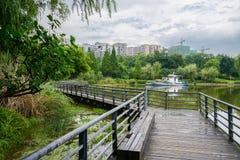 在城市附近湖边弄湿被操刀的和planked人行桥在Th以后 库存照片