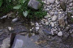 在城市附近的污染的河 库存图片