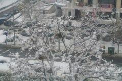 在城市雪的冬天 免版税库存图片