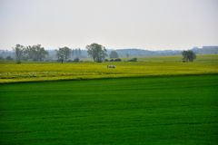 在城市-农村风景之外-领域 库存图片