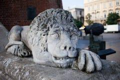 在城镇厅塔的狮子雕塑在克拉科夫 免版税库存图片