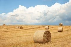 在域的干草捆 库存图片