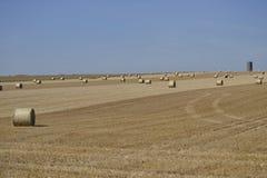 在域的干草捆 免版税库存照片