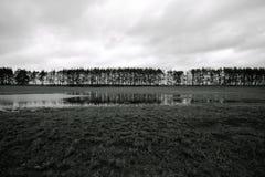 在域的秋天 风景 免版税库存照片