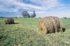 在域的被打包的干草 免版税库存图片