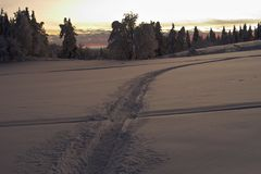在域雪间 图库摄影