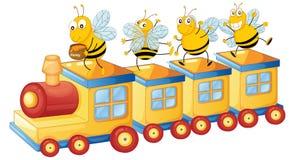 在培训的蜂蜜bess 图库摄影