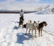 在基于雪的鞔具的爱斯基摩 库存照片