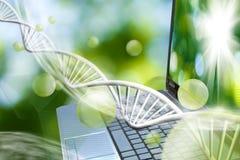 在基因链背景的笔记本 免版税图库摄影