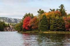 在基拉尼湖边缘的多彩多姿的秋天树  库存图片