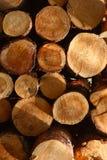 在堆切开和堆积的自然木日志 免版税库存照片