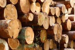在堆切开和堆积的自然木日志 免版税库存图片