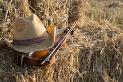 在堆和弓安置的一把小提琴秸杆在领域下 库存图片