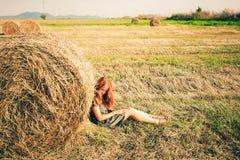 在堆的干草在领域 库存照片