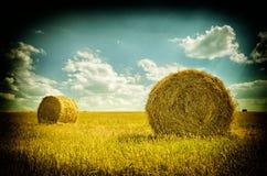 在堆的干草在领域 免版税库存照片