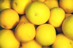 在堆的葡萄柚 库存图片