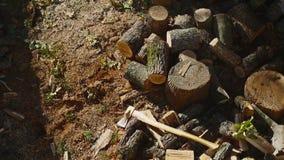 在堆02的投掷的木头 股票录像