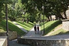 在堡垒墙壁之间的老镇锡比乌罗马尼亚胡同 库存图片
