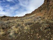 在堡垒岩石的野草 库存图片