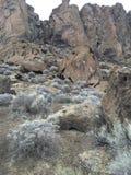 在堡垒岩石的结霜的灌木 免版税库存图片