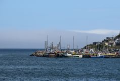 在堡垒阿默斯特,圣约翰` s NL加拿大附近靠码头 免版税库存照片