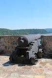 在堡垒Ticonderoga的大炮 库存照片