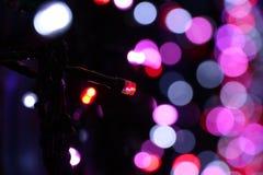 在堪培拉SIDS和孩子光的LEDs显示 图库摄影